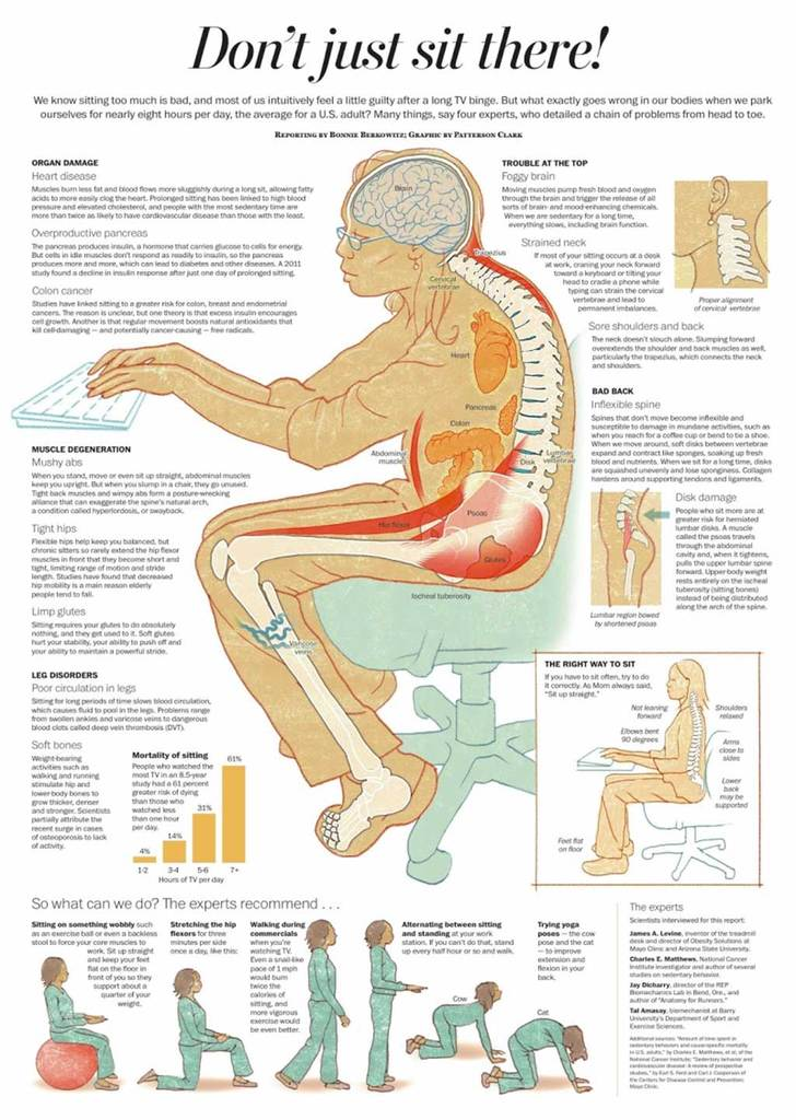 sitting-infographic_1_1024x1024.jpg